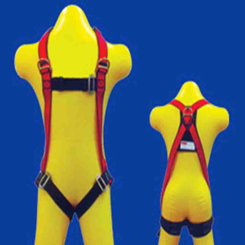 CIG 19453 - Full Body Harness