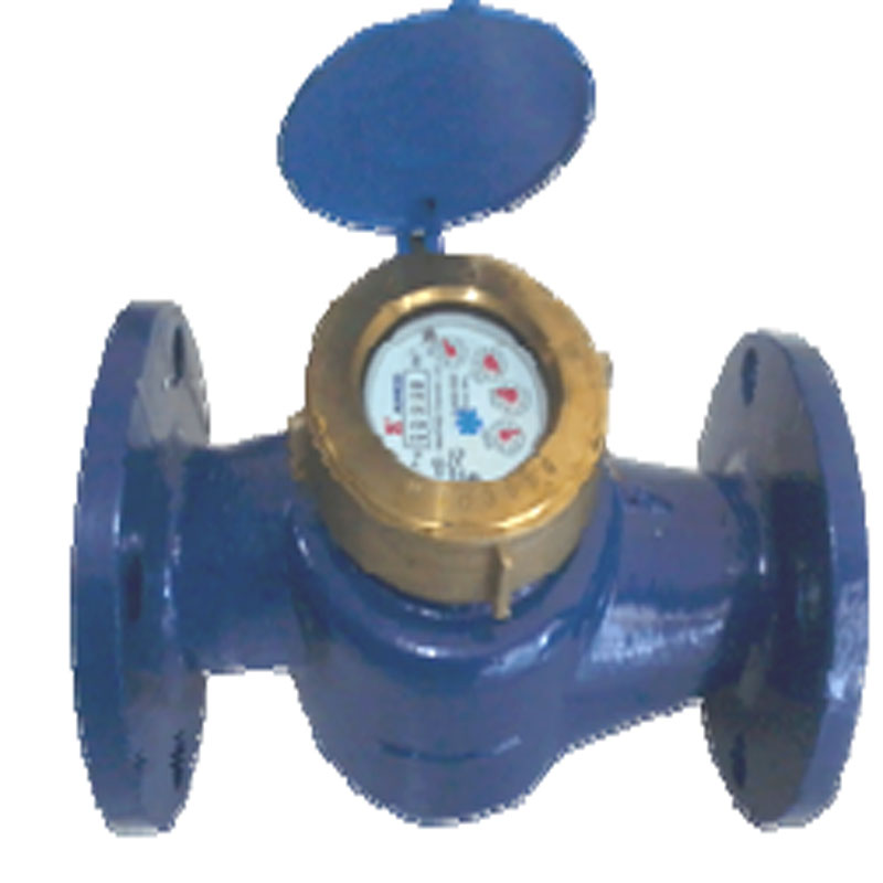 Amico Water Meter 2in Type LXSG 50E