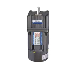 TUNG LEE - SINGLE PHASE REVERSIBLE TYPE30-MINUTES RATED MOTORS
